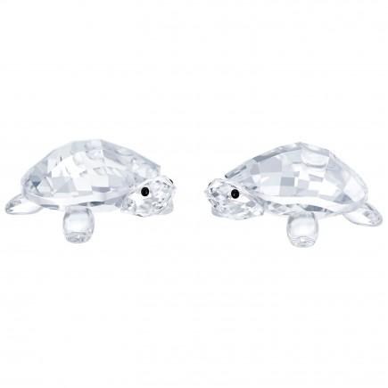Swarovski Baby Tortoises, 5394564
